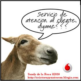 20101005213059-servicio-al-cliente.jpg