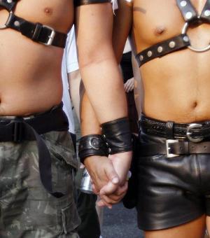 20090503201226-gays.jpg